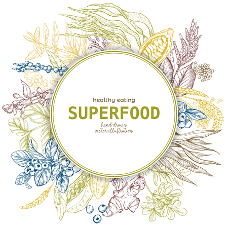 Superfood round banner, color sketch vector illustration, vegan healthy food design. Kelp, cacao, ginger, moringa, blueberry, goji, stevia, seeds, grain. Illustration