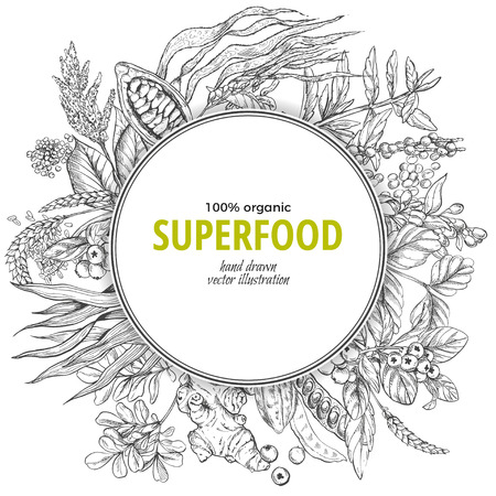 Superfood round banner, sketch vector illustration, vegan healthy food design. Kelp, cacao, ginger, moringa, blueberry, goji, stevia, seeds, grain. Illustration