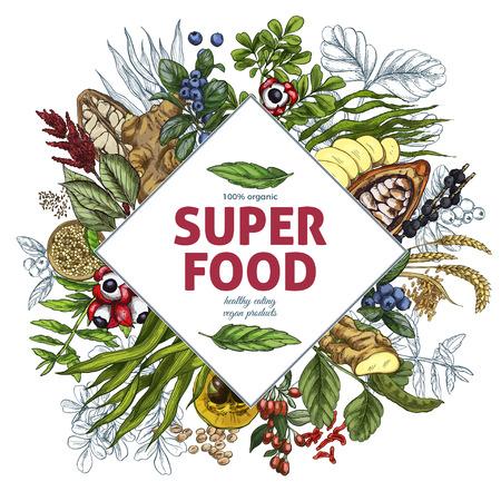Superfood rhombus banner, full color realistic sketch vector illustration, vegan healthy food design. Kelp, cacao, ginger, moringa, blueberry, goji, stevia, seeds, grain. Illustration
