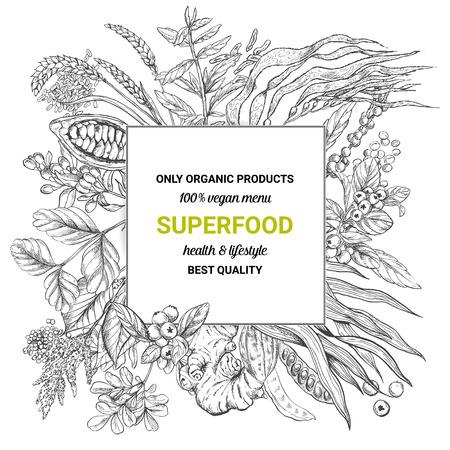 Superfood square banner,sketch vector illustration, vegan healthy food design. Kelp, cacao, ginger, moringa, blueberry, goji, stevia, seeds, grain.