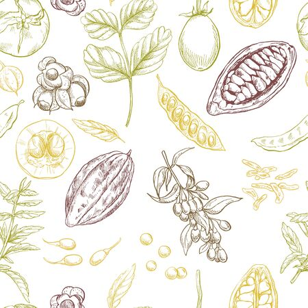 Superfood. Seamless botanical pattern, Realistic color vector sketch illustration. Stock Vector - 83220196