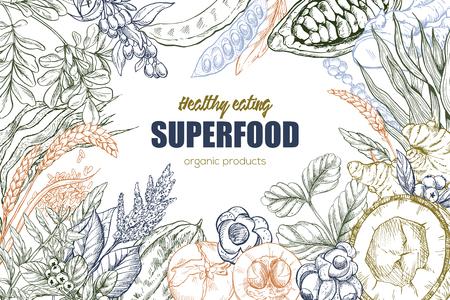 Superfood, realistic sketch frame design for vegan cafe or restaurant. Hand drawn vector illustration. Kelp, cacao, ginger, moringa, blueberry, goji, stevia, seeds, grain. Stock Vector - 83220198