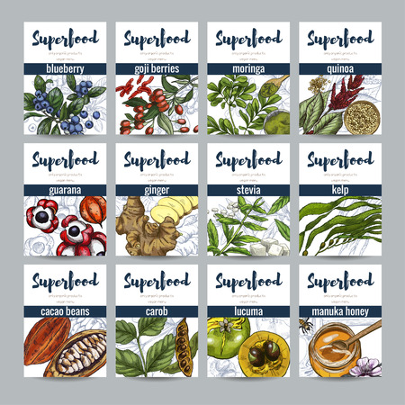 Superfood banners set, hand drawn vector sketch illustration. Eco food,  blueberry, cacao, ginger, moringa, goji, lucuma, carob, quinoa seeds.