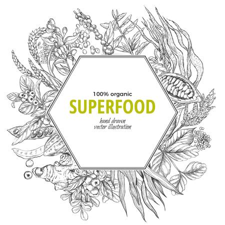 Superfood hexagon banner, sketch vector illustration, vegan healthy food design. Kelp, cacao, ginger, moringa, blueberry, goji, stevia, seeds, grain. Stock Vector - 83220238