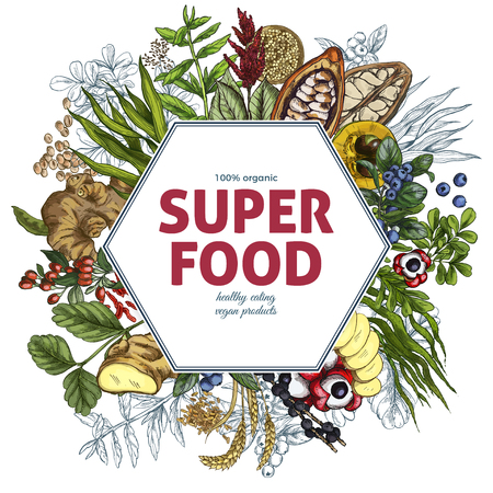 Superfood hexagon banner, full color realistic sketch vector illustration, vegan healthy food design. Kelp, cacao, ginger, moringa, blueberry, goji, stevia, seeds, grain.