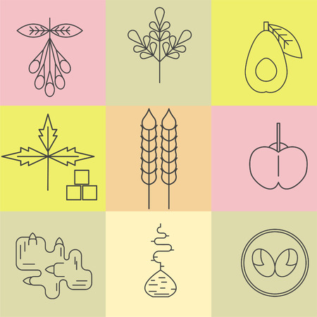 Superfood line icons set. Color background. Goji, moringa, avocado, stevia, wheat, acerola, ginger, maca, lucuma. Vector illustration. Illustration