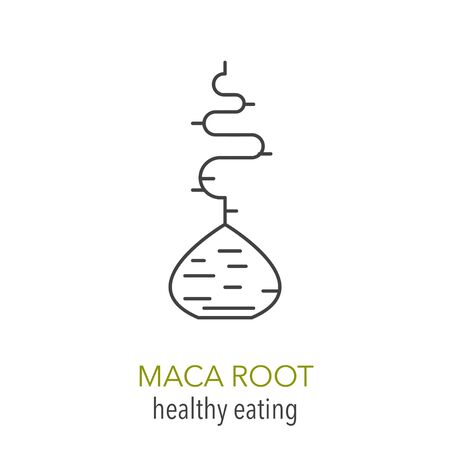 Maca root. Vector line icon. Healthy eating. Vector illustration.