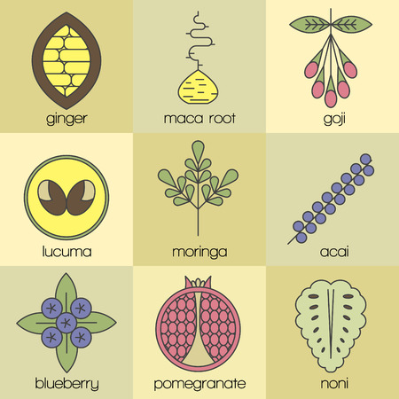 Color superfood line icons set. Color background. Cacao, maca, goji, lucuma, moringa, acai, blueberry, pomegranate, noni
