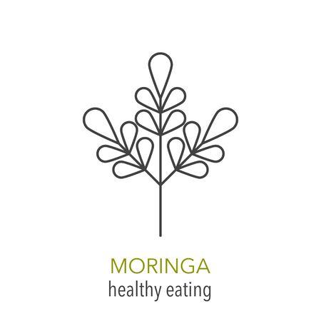Moringa. Vector line icon. Healthy eating. Vector illustration.