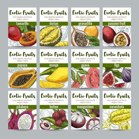 hand print: Set of 12 exotic fruits posters, hand drawn vector illustrations, full color realistic sketch. tamarillo; durian; granadilla; passion; guava; papaya; mango; fig; pitahaya; lychee; mangosteen; carambola