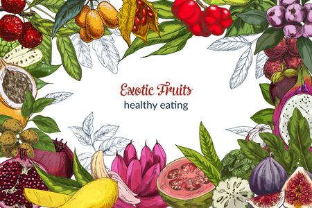 Full color exotic fruits, decorative frame, vector illustration. Landscape orientation.