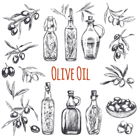 Vector hand drawn engraved illustration of olive branches with olive fruits and bottles of olive oil with herbs. Sketch vintage style. Ilustracja