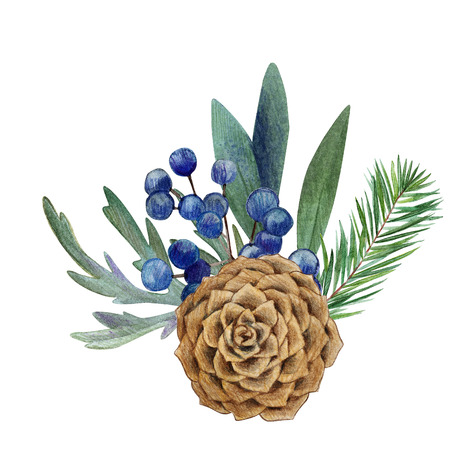 floral watercolor arrangement with cone and fir, hand drawn illustration Stock Photo