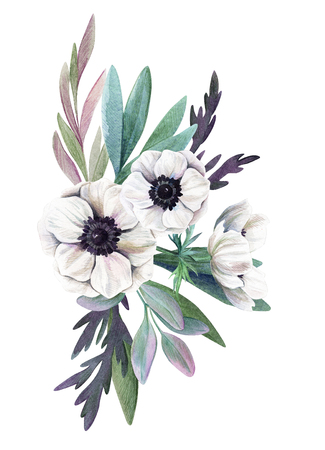 floral watercolor arrangement with anemones, hand drawn illustration Фото со стока