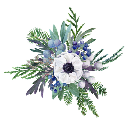 floral watercolor arrangement with anemone and conifer branches, hand drawn illustration Stock Photo