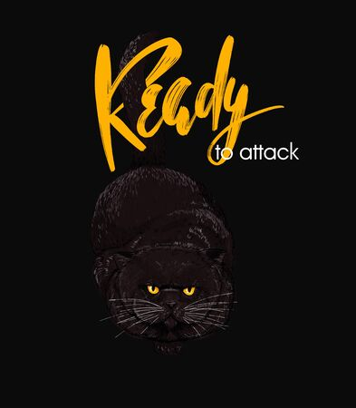 Fat dark brown cat ready to attack on black background, READY TO ATTACK hand script at the top, hand drawn sketchy vector illustration. Poster, apparel design, T-shirt print Illusztráció