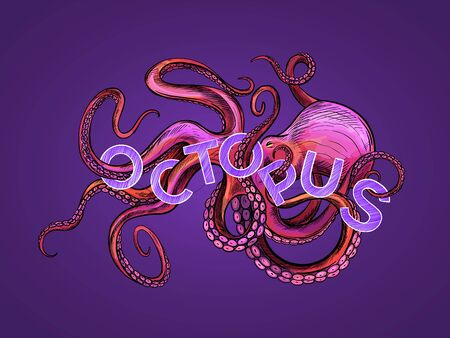 Glamourous octopus drawn in pink and violet colors, tentacles are twisted with the word OCTOPUS, hand drawn vector illustration on purple background. Apparel design, tishirt print, label  イラスト・ベクター素材