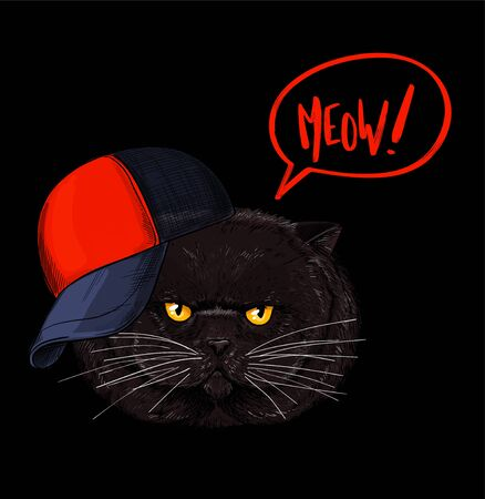 Brown grumpy cat face, red and black cap is on the head. Red bubble speach with word MEOW. Hand drawn vector illustration.