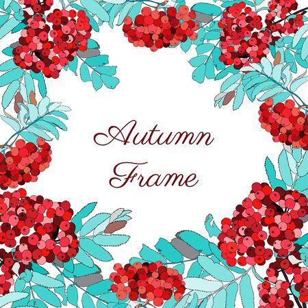 red berries frame, vector plant design element 向量圖像