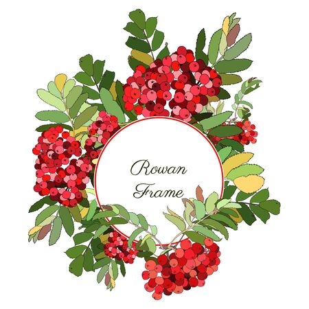 Round frame decorated with red rowan berries  イラスト・ベクター素材