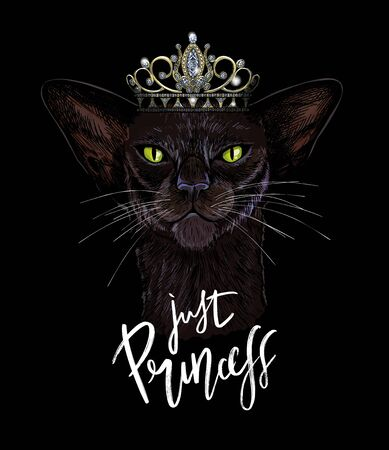 Black oriental cat in crown with shiny diamonds Ilustracja