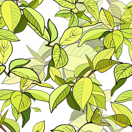 Seamless pattern of branches with green leaves