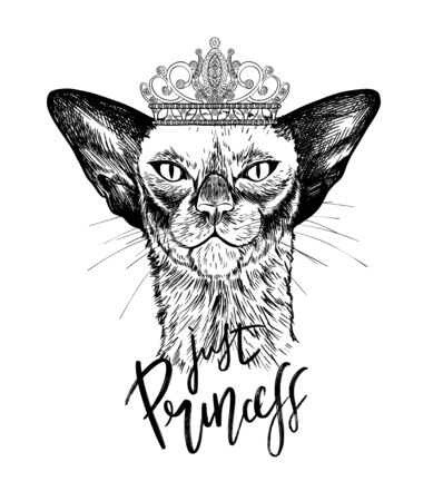 Black oriental cat in crown with diamonds