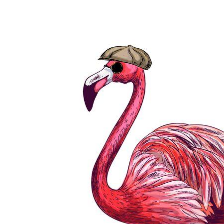 Flamant rose familier en casquette et lunettes de soleil noires, croquis en couleur, illustration vectorielle dessinée à la main