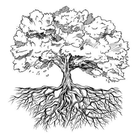 Árbol con hojas y raíces, dibujado a mano