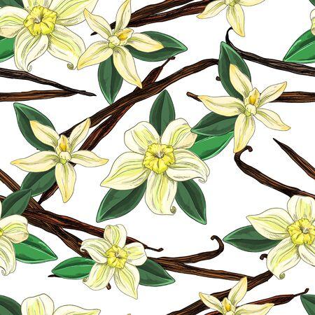 Vanilla beans with flowers and leaves, seamless pattern Vektoros illusztráció