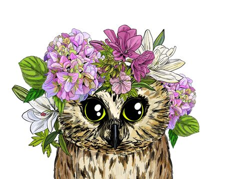 Cute owl with flowers on its head, full color sketch, hand drawn vector illustration Ilustração