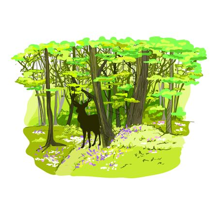Spring forest full of flowers and rein deer, hand drawn vector illustration