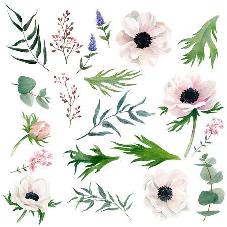 Set of delicate watercolor anemones, leaves, berries Ilustração Vetorial