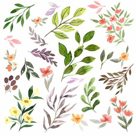 Tiny delicate flora, watercolor flowers, leaves and branches. Hand drawn vector set of illustrations.