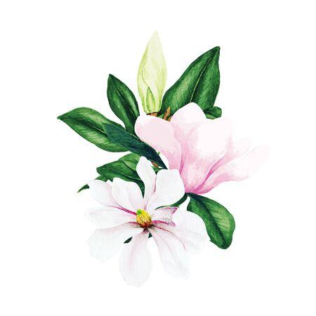 Magnolie und Blätter, heller Aquarellblumenstrauß, handgezeichnete Vektorillustration