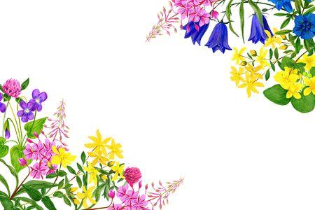 Watercolor field flowers, bright colors, corner frame