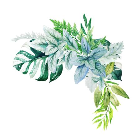 Greenery decorative corner arrangement, composed of fresh green leaves of monstera, branches and ferns. Hand drawn watercolor illustration. Design template.