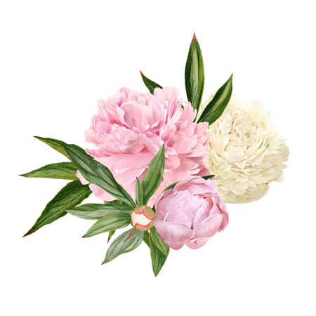 Lush hand drawn peony bouquet, white and pink flowers Imagens