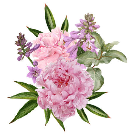 Pink peonies, hosta flowers and siverberry branch Imagens