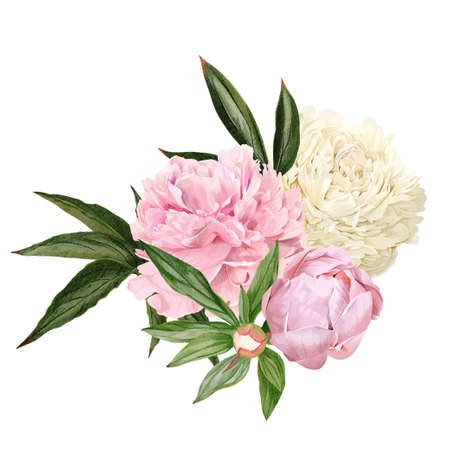 Lush hand drawn peony bouquet, white and pink flowers Ilustración de vector