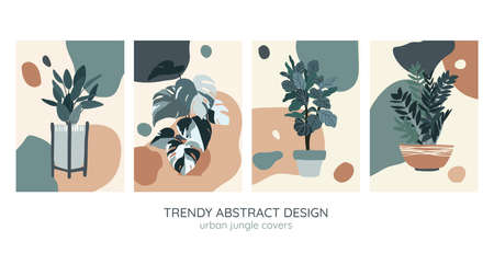 Set of four covers templates, indoor plants illustration