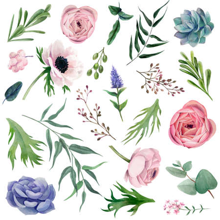 Set of delicate watercolor anemones, leaves, berries and other botanicals