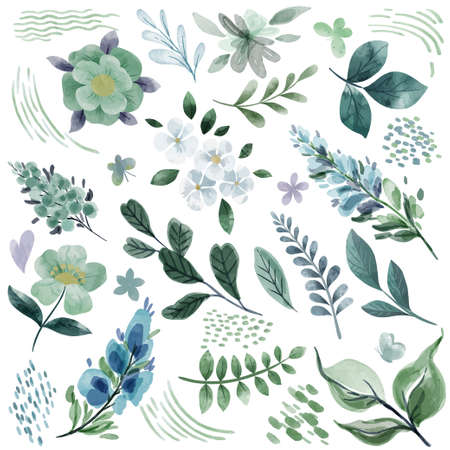 Cool green botanical florals, hand drawn watercolor elements