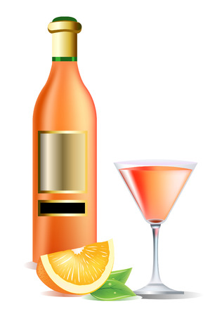 Vector realistic bottle on wine, orange and cocktail Vector
