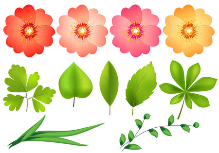 Floral design elements Stock Vector - 7652190