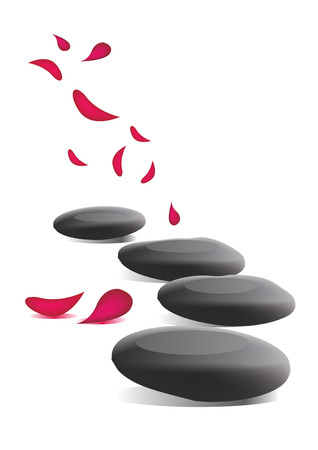 spa stones: Spa stones and petals