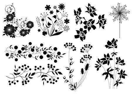 Silhouettes of herbs, berries and flowers  Vector