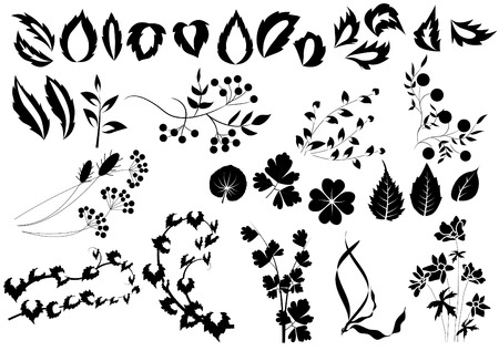 rnart: Silhouettes of herbs and flowers  Illustration