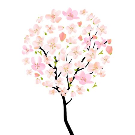 �rbol de florecimiento cerezo
