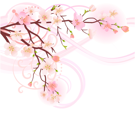 twigs: Blossoming tree